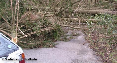 """После того как ураган """"Ксинтия"""" пронёсся над Францией, в стране началась полемика о том, можно […]"""