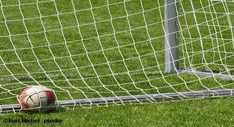 Чемпионата Европы по футболу принесет ведущему немецкому производителю спортивного инвентаря, одежды и обуви Adidas, более 1,5 млрд. евро.