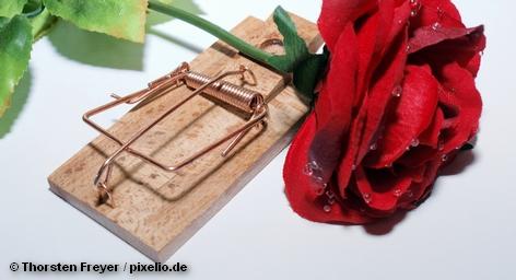 Роза в мышеловке