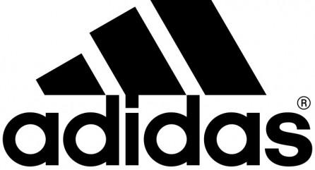Благодаря чемпионату мира по футболу, который пройдет в будущем году в Бразилии, в Adidas ожидают рекордных оборотов.