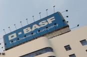 Химический концерн BASF в настоящее время анализирует возможность добычи и производства сланцевого газа в Европе.