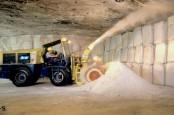 Покупатели минеральных удобрений ждут, когда цена на калийные соли совсем упадет на землю