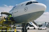 Даже вешалки для одежды на борту самолетов Lufthansa вскоре будут не деревянные, а пластмассовые.