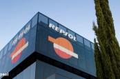 Энергетический концерн Repsol намерен провести разведку нефти у побережья Канарских островов. Защитники окружающей среды уже бьют тревогу.