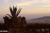 Хотя количество иностранных туристов в Каталонии неуклонно растет, Барселоне пришлось обратиться к Мадриду за финансовой помощью.