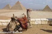 Thomas Cook снова предлагает путевки на курорты Красного моря, а TUI все еще не видит причин отправлять туристов в Египет.