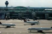 Авиакомпания Lufthansa нуждается в дополнительной воздушной гавани для новой дочери.