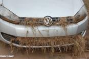 Ураган «Сэнди» и устаревающий автопарк привели американцев в ноябре в автосалоны. Особенно это выгодно немецких автопроизводителей.